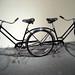 Art Bike II by Telstar Logistics