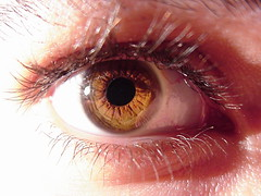iris, contact lens, brown, macro photography, eyelash, close-up, eyebrow, pink, eye, organ,