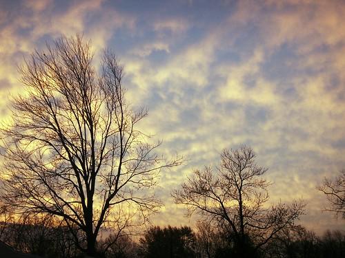 trees sky usa beautiful clouds sunrise wonderful us newjersey interestingness amazing nice bravo unitedstates gorgeous great nj 2006 explore monmouthcounty lovely fabulous bayshore splendid terrific konicaminolta welldone unionbeach views500 dimagex1 neloesteves zip07735 2006november16