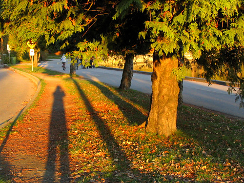 canada vancouver britishcolumbia stanleypark 加拿大 温哥华 不列颠哥伦比亚 斯坦利公园