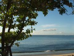 Barbados 010