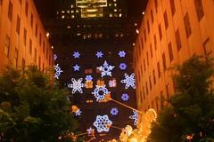flower(0.0), christmas decoration(0.0), christmas lights(0.0), christmas tree(0.0), landscape lighting(1.0), light(1.0), christmas(1.0), night(1.0), lighting(1.0),