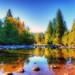 lewis River 4 Orton.jpg by jodi_tripp