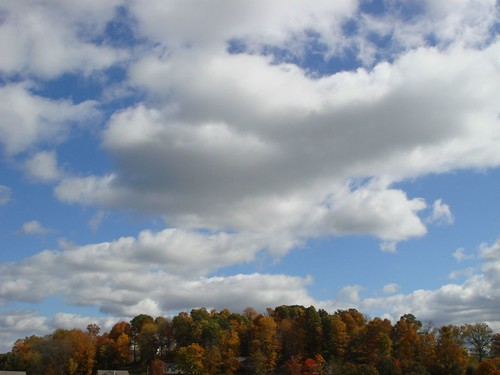 autumn trees clouds