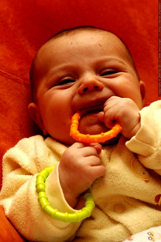 sequoia and his baby chew toy bracelets    MG 9425