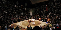 sumo(1.0), people(1.0), sports(1.0), crowd(1.0), wrestling(1.0), audience(1.0),