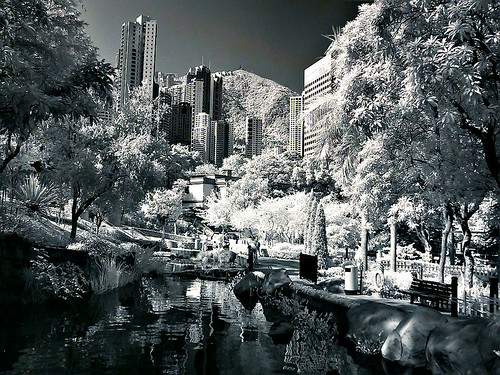 Infrared@Hong Kong Park