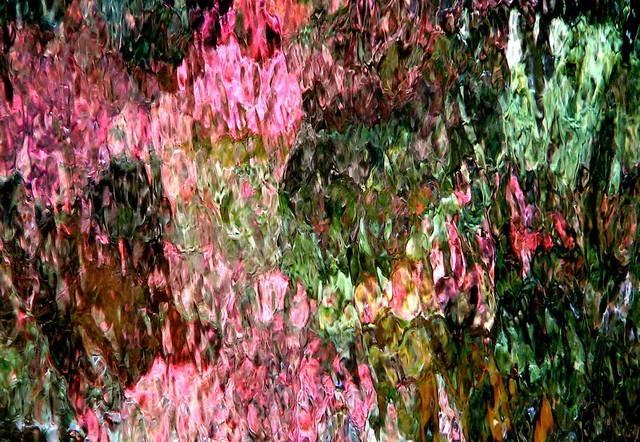 The pink garden! Le jardin rose!