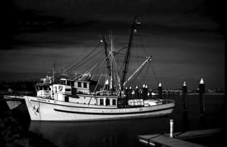 Tuna boats -1989 - Port Lincoln - South Australia