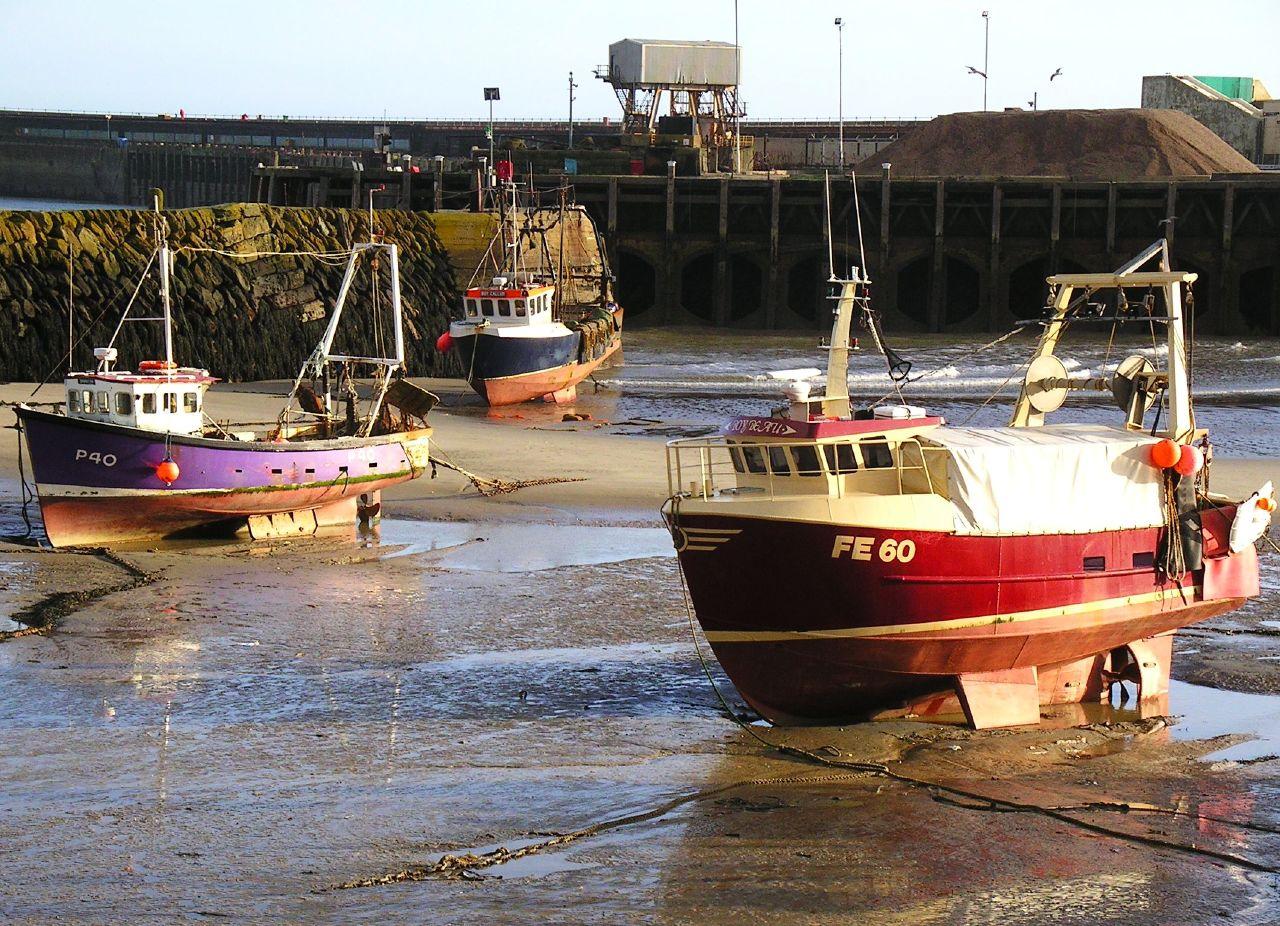Book 3, Walk 13, Folkestone Circular 9 More boats on legs, Folkestone Harbour, 3 March '07