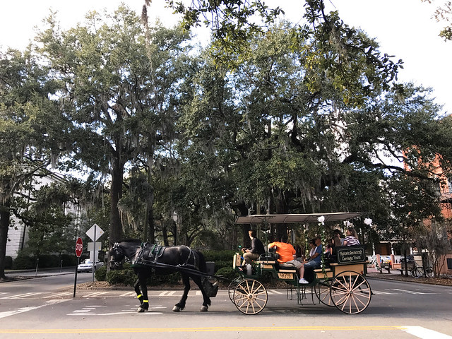 Horse Carriage at Savannah
