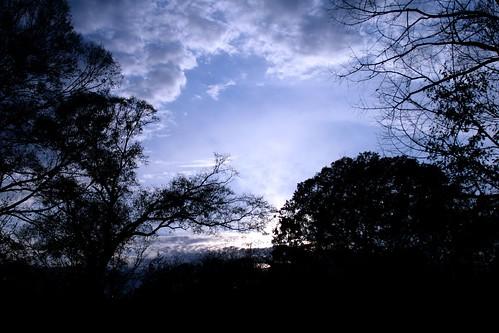 trees sunset nature clouds landscape ilovenature louisiana backlit mrgreenjeans gaylon clintonla gaylonkeeling