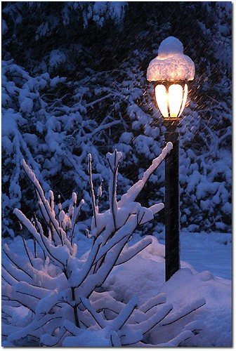 Lamp Post of Narnia?