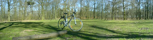 Blurry bike in spring forest (panorama)