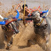 Buffalo Racing by David_Lazar