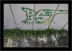 Colour Co-ordinated Graffiti.
