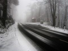 monochrome(0.0), fog(1.0), winter(1.0), snow(1.0), rain and snow mixed(1.0), morning(1.0), winter storm(1.0), blizzard(1.0), freezing(1.0), mist(1.0),