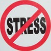 "The ""No Stress"" Sticker"