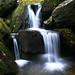 Apple Orchard Falls Subfalls by Gafoto