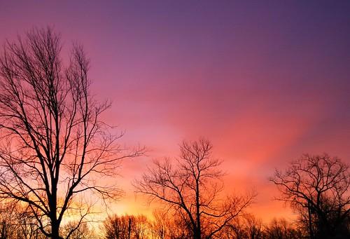 trees usa beautiful sunrise wow spectacular landscape geotagged us newjersey amazing nikon unitedstates gorgeous awesome great nj 2006 stunning monmouthcounty bayshore unionbeach views200 d80 neloesteves zip07735 nikond80 geo:lat=40447167 geo:lon=74162188