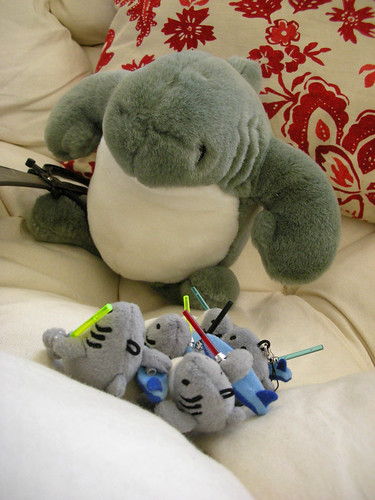 Tiny Sharkas reporting for duty, sir! (13 of 17)
