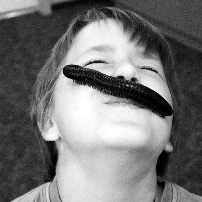 bug zoo mustache