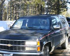 sport utility vehicle(0.0), compact sport utility vehicle(0.0), chevrolet(1.0), automobile(1.0), automotive exterior(1.0), pickup truck(1.0), vehicle(1.0), truck(1.0), chevrolet silverado(1.0), bumper(1.0), land vehicle(1.0), luxury vehicle(1.0),
