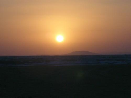 camp desert egypt cairo oasis 露營 沙漠 埃及 開羅 2007day10 綠洲