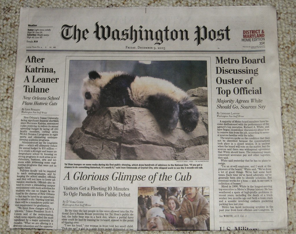 The Washington Post: A Glorious Glimpse Of A Cub [CP] (Dec 05)