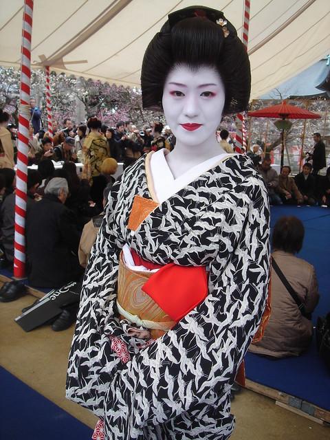 Geiko Satoyuki of Kamishiciken,Kyoto, Sony DSC-F88