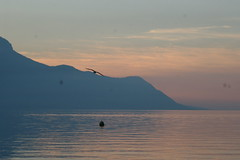 Sunset on Lac Leman