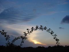 Sky, sun & clouds / niebo, słońce i chmury