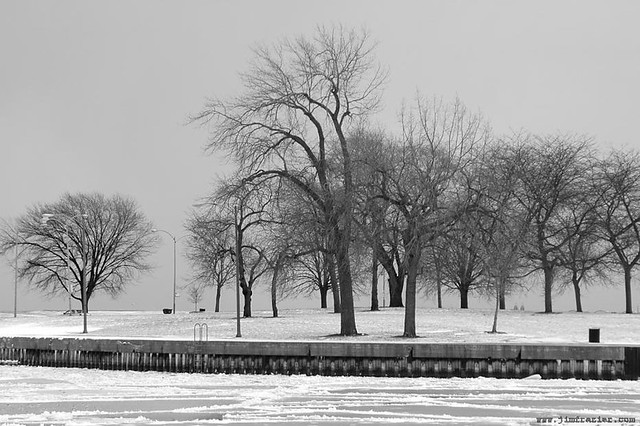 Winter at Montrose Harbor