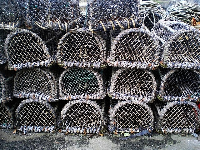 Lobster Pots2