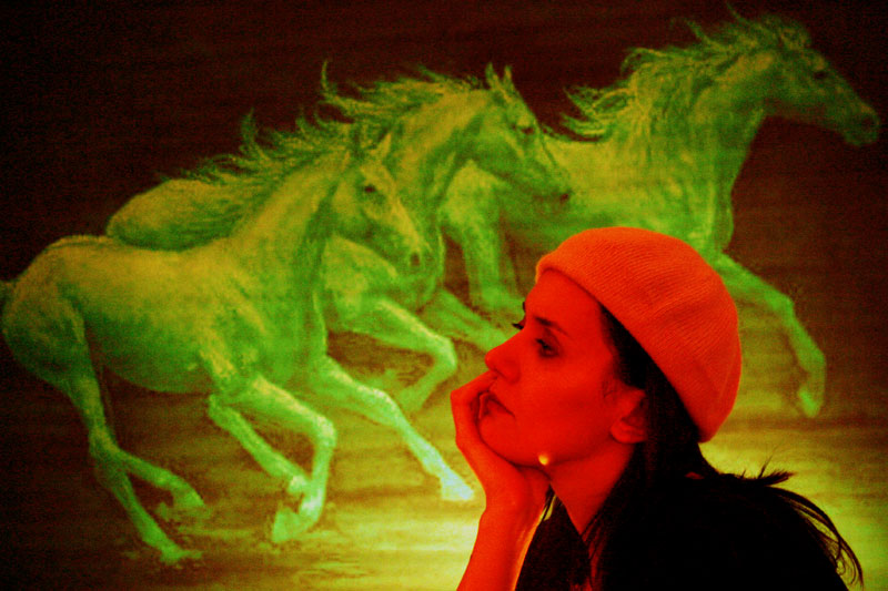 Green horses on the wall / Cai verzi pe pereti (1)