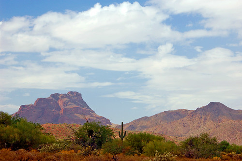 Landscape, Tonto National Forest, Arizona