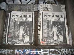 Momo: New Yorker