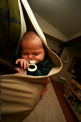 sequoia sleeps through his first call from great gra…
