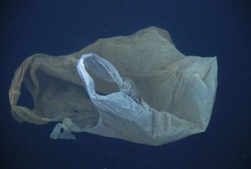 水域中漂浮的塑膠袋和塑膠垃圾。(圖:polandeze)