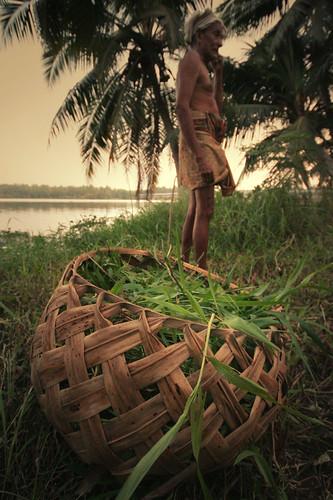 grass basket kerala backwaters trivandrum southindia thiruvananthapuram abigfave suburbsoftrivandrum lastpieceofland seemakk
