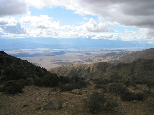 Looking west from Joshua Tree