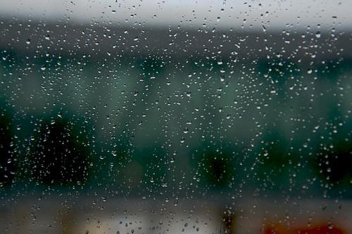 Let's hear your idea about… RAIN