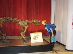 Yesica lo prefiere al Gliptodonte.