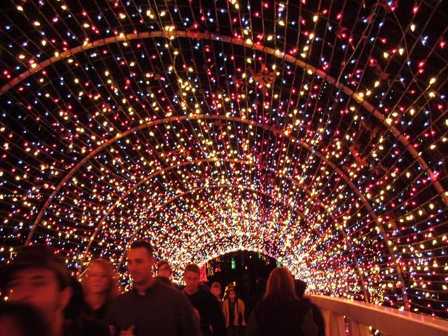 Rhema Bible College Christmas Lights