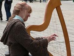 The Harp  Harp Cases - Getting the Right Case For Your Harp 319998735 0fb2e22fec m