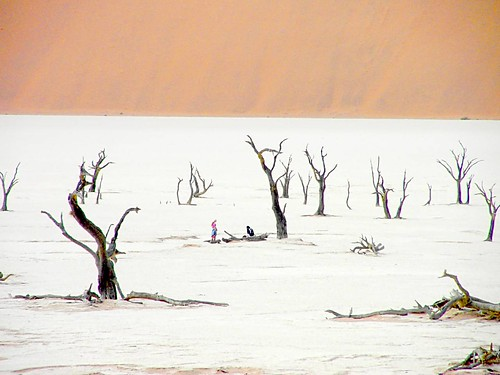 Namibian desert - another World