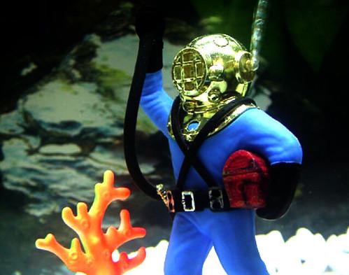 Aquarium diving flickr photo sharing for Aquarium diver decoration