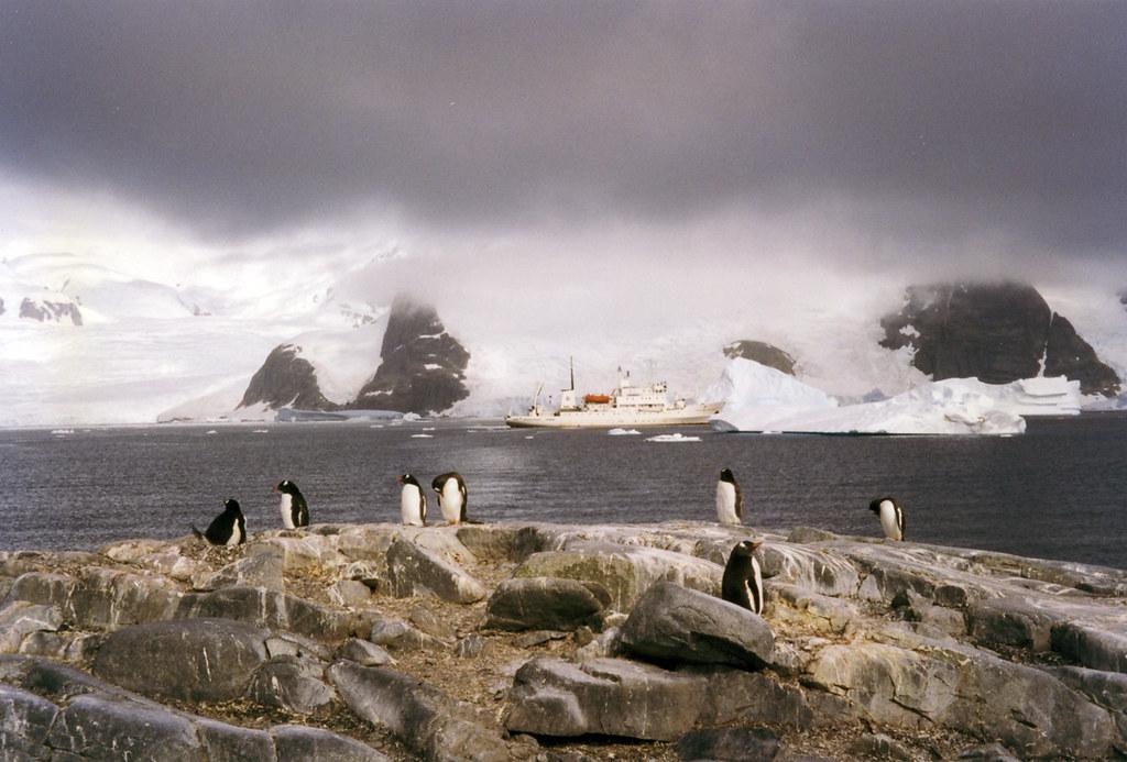 antarctica_molchanov