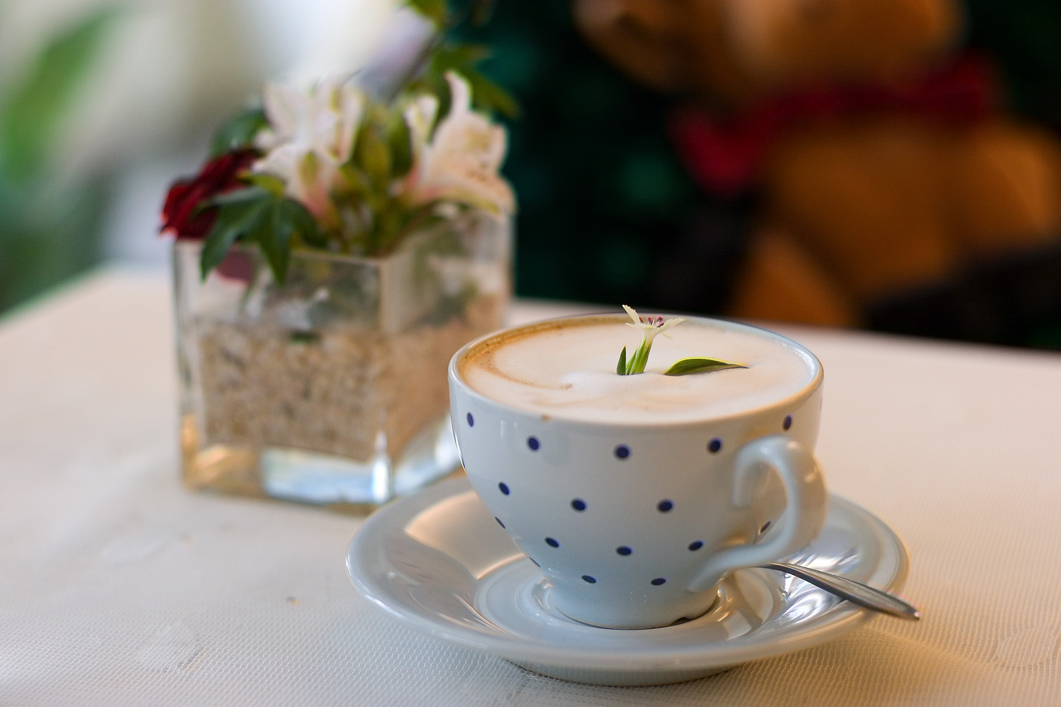 Jamieson S Cafe And Tea Room Oakwood