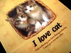 I love cat by FunKinki